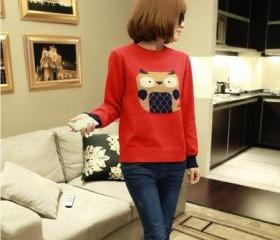Fashion top sweater ..