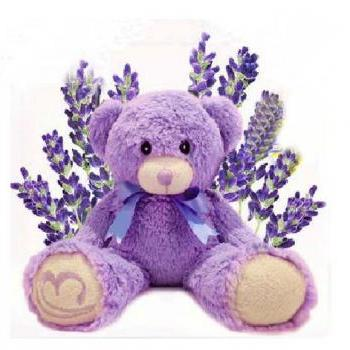 Authentic Australia Lavender Bear ,Bridestowe Lavender Heat Bear, Teddy Bear Plush Toys, Purple Bear